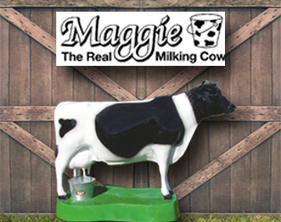 Maggie, The Real Milking Cow