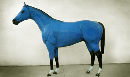 Blue Thoroughbred Horse